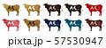 A5ランクラベル 57530947