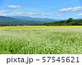会津のそば畑 57545621