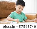 お絵描きをする男の子 57546749