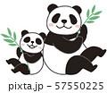 竹とおやこパンダ 57550225