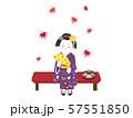 京都 舞妓3 57551850