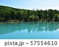 北海道美瑛町の青い池 57554610