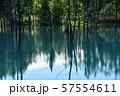 北海道美瑛町の青い池 57554611