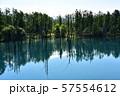 北海道美瑛町の青い池 57554612