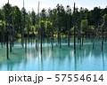 北海道美瑛町の青い池 57554614