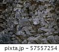 玄武洞の柱状節理 57557254