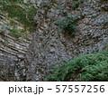 玄武洞の柱状節理 57557256