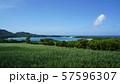 川平湾 57596307