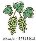 ブドウの実と葉 57613918