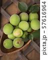 Close up of green plum, summer fruit 038 57616964