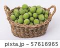 Close up of green plum, summer fruit 037 57616965