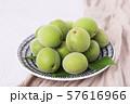 Close up of green plum, summer fruit 009 57616966
