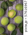 Close up of green plum, summer fruit 028 57616967
