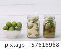 Close up of green plum, summer fruit 022 57616968