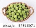 Close up of green plum, summer fruit 025 57616971