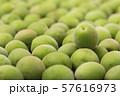 Close up of green plum, summer fruit 018 57616973