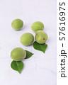 Close up of green plum, summer fruit 001 57616975