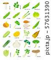 春季の野菜 57631390