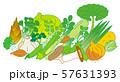 春季の野菜 57631393