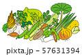 春季の野菜 57631394