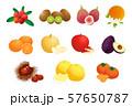 果物 57650787