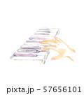 鍵盤と手、紫色 57656101