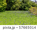 大田神社 57665014