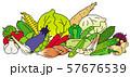 夏季の野菜 57676539