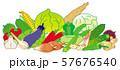 夏季の野菜 57676540