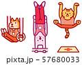 動物キャラ スポーツ オリンピック競技 体操 57680033