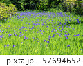 大田神社 57694652
