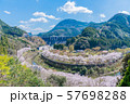 桜 満開 溪石園 ダム 57698288