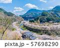 桜 満開 溪石園 ダム 57698290