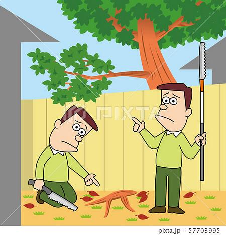 枝と根っここんな場合切っていい? 57703995
