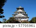 晴天の大阪城 57705961