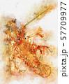 浮世絵 エビ その4 水彩 57709977