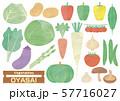 野菜セット 水彩風イラスト 57716027