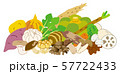 秋季の野菜 57722433