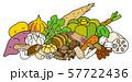 秋季の野菜 57722436