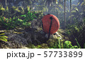 Wrecked space capsule lies in the jungle in the middle of palm trees and tropical vegetation. 3D 57733899