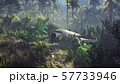 Wrecked plane lies in the jungle in the middle of palm trees and tropical vegetation. 3D Rendering 57733946