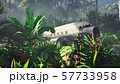 Wrecked plane lies in the jungle in the middle of palm trees and tropical vegetation. 3D Rendering 57733958