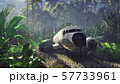 Wrecked plane lies in the jungle in the middle of palm trees and tropical vegetation. 3D Rendering 57733961