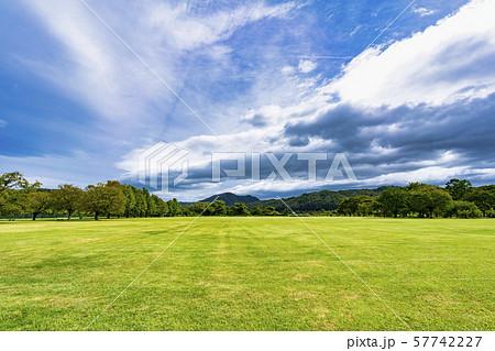秋の公園  広場 宮城川崎 57742227