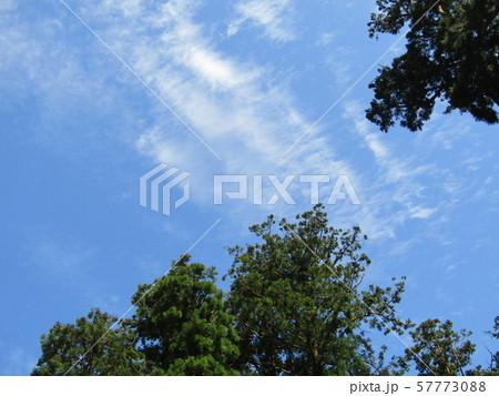 九月の青空と白い雲 57773088