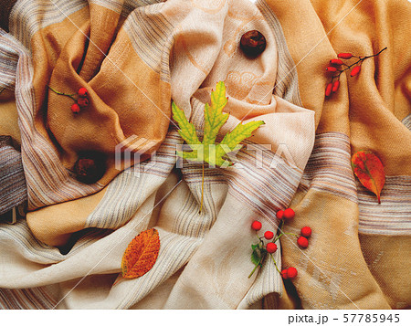Beige scarf with fallen leaves and berries on white background. Folded warm accessory with autumn plants. Top view, flat lay. 57785945