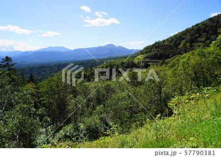 9月 上士幌町20三国峠・道内国道最高地点 57790381