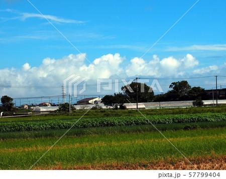 田園風景(香長平野) 57799404
