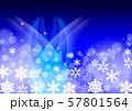 雪の結晶 57801564