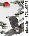 松と鷲 57816575